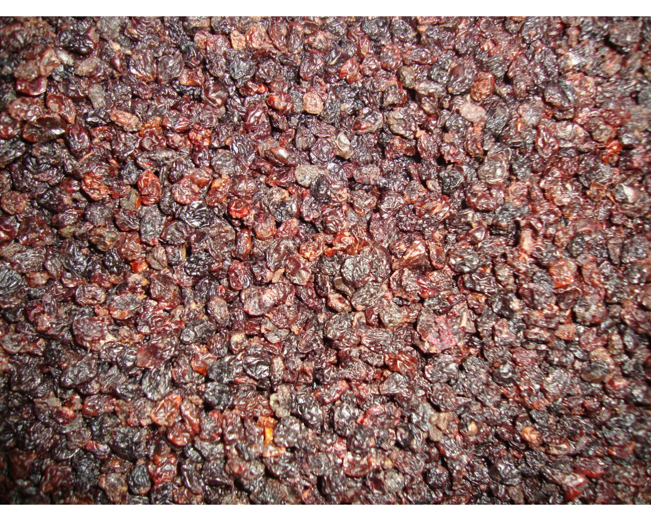 Raisins de Corynthe
